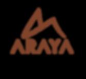 araya2-12-3.png