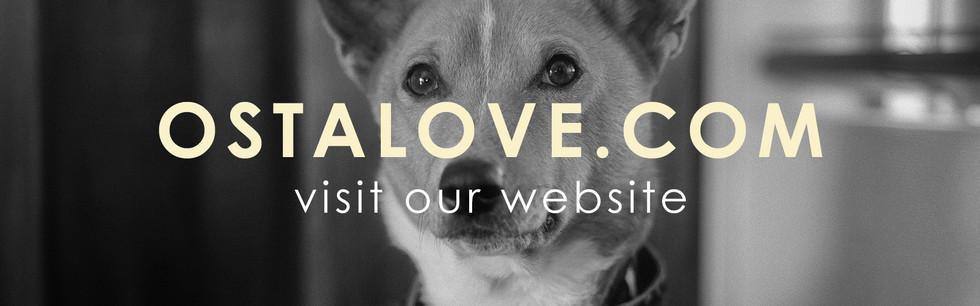website button.jpg