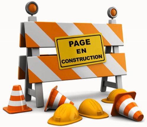 Page-en-construction_edited.jpg