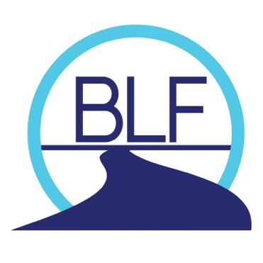 BLF4_teal.png