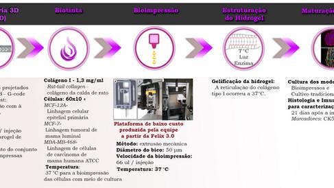 Plataforma de bioimpressão de baixo custo para análise de tumores e organoides