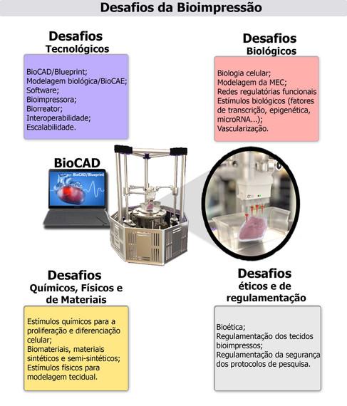 Desafios da Bioimpressão