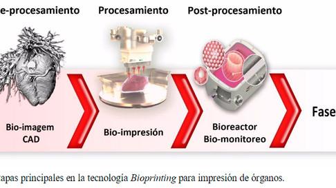 Janaina Dernowsek: Um panorama da bioimpressão 3D no Brasil