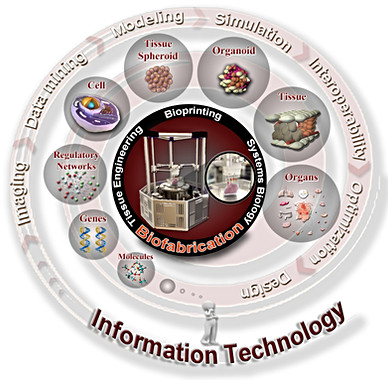 Tecnologia da Informação presente na Biofabricação de Tecidos e Órgãos