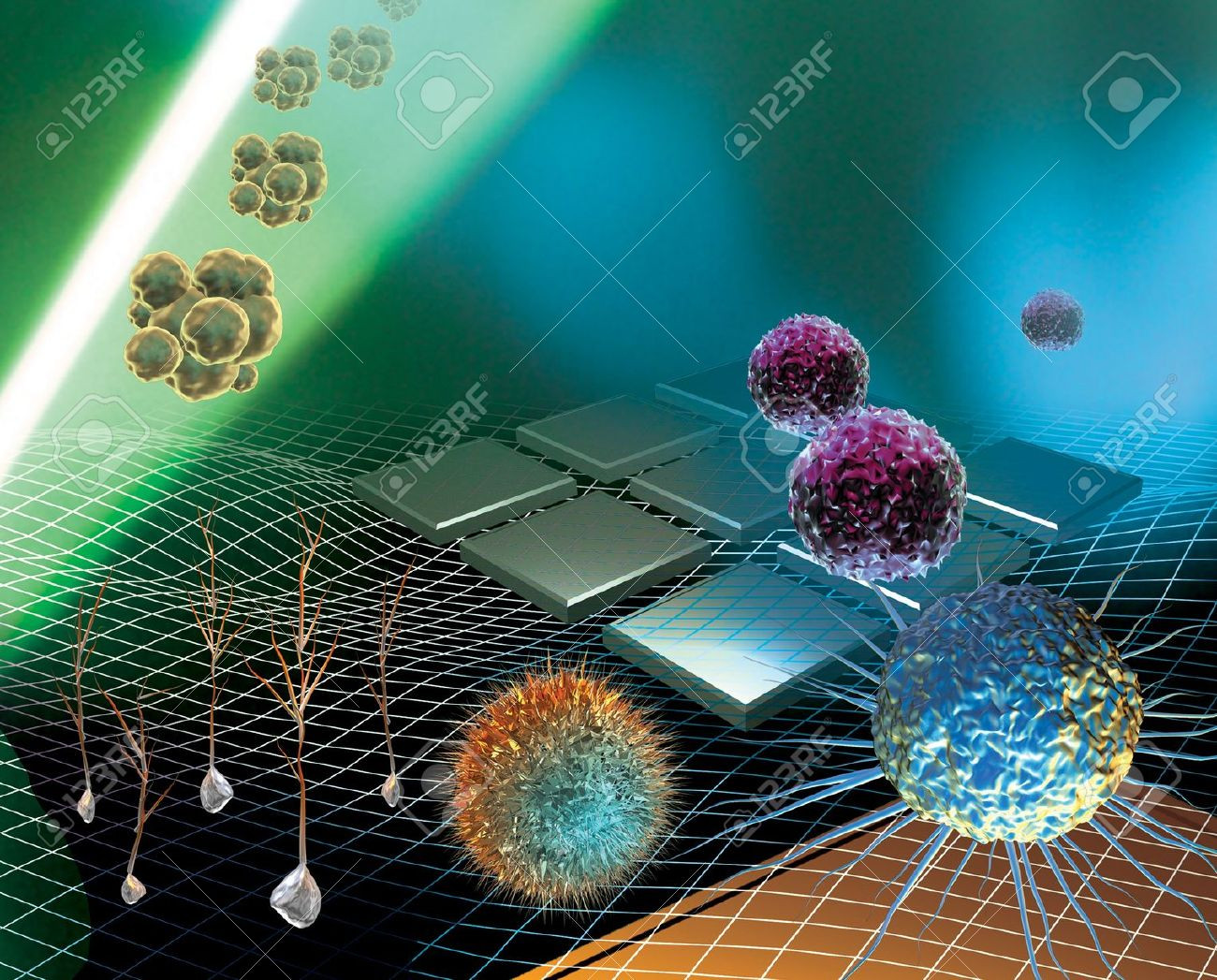 12544872-3D-rendered-conceptualization-of-stem-cell-research-Stock-Photo.jpg