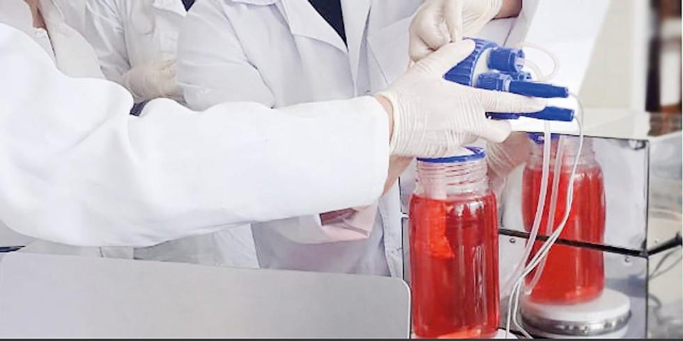 VI Curso em Biorreatores e Engenharia de Tecidos
