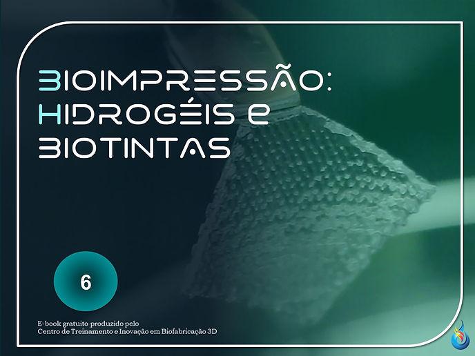 E-BOOK 6 -biotintas.jpg