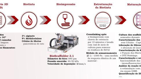 Bioimpressão de células produtoras de insulina