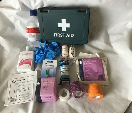 1st Aid Kit Large