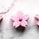 Thumbnail: Japanese Cherry Blossom Bath Bomb