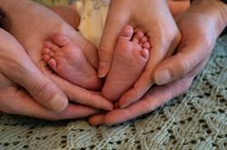 Newbornshoot Siem