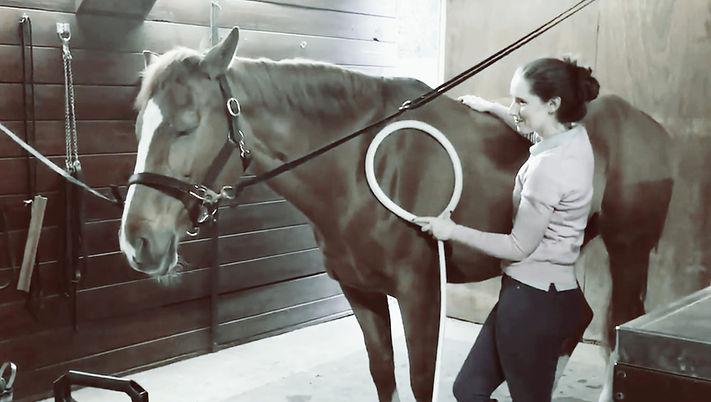 Sam treating horse