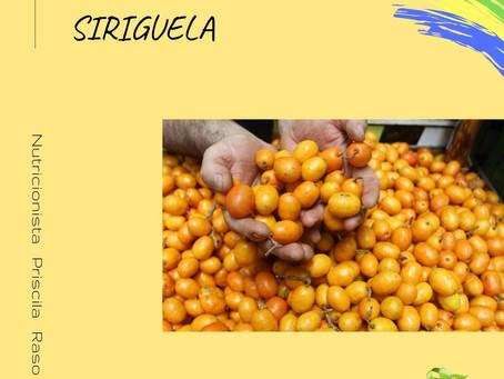 Frutas brasileiras: Siriguela