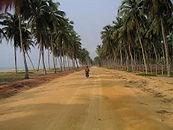 la route des pêches au BENIN