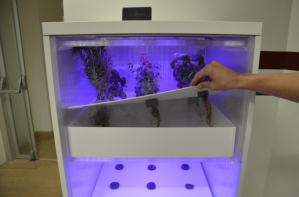 Aeroponics indoor-garden third-generation neoFarms prototype