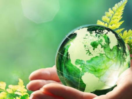 Webinar | ISO 14001: sostenibilità ambientale e vantaggi