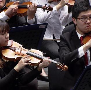 Johann Strauss - Pizzicato Polka, OP. 234