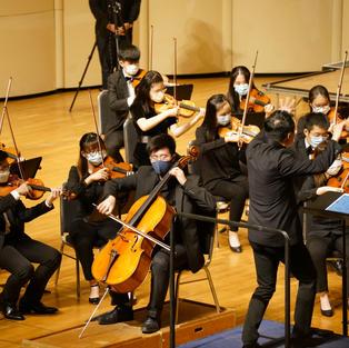 Antonín Dvořák - Cello Concerto in B minor, Op. 104, B. 191 - 1
