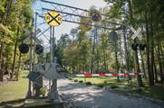 Pine Paradise Entrance
