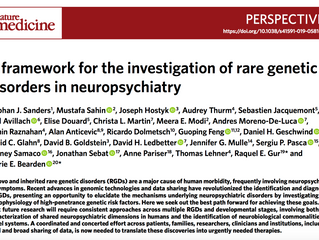 A Framework for the Investigation of Rare Genetic Disorders in Neuropsychiatry