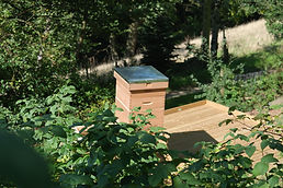 Our Beehive