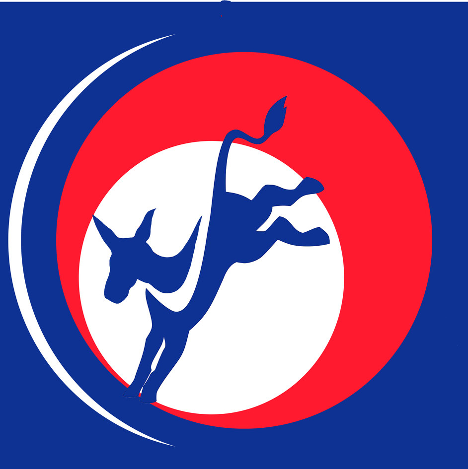 Giraldo Campaign logo.jpg