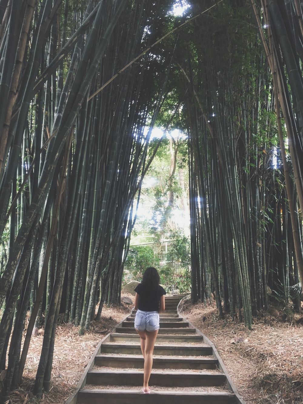 woman up steps flanked by bamboo forest