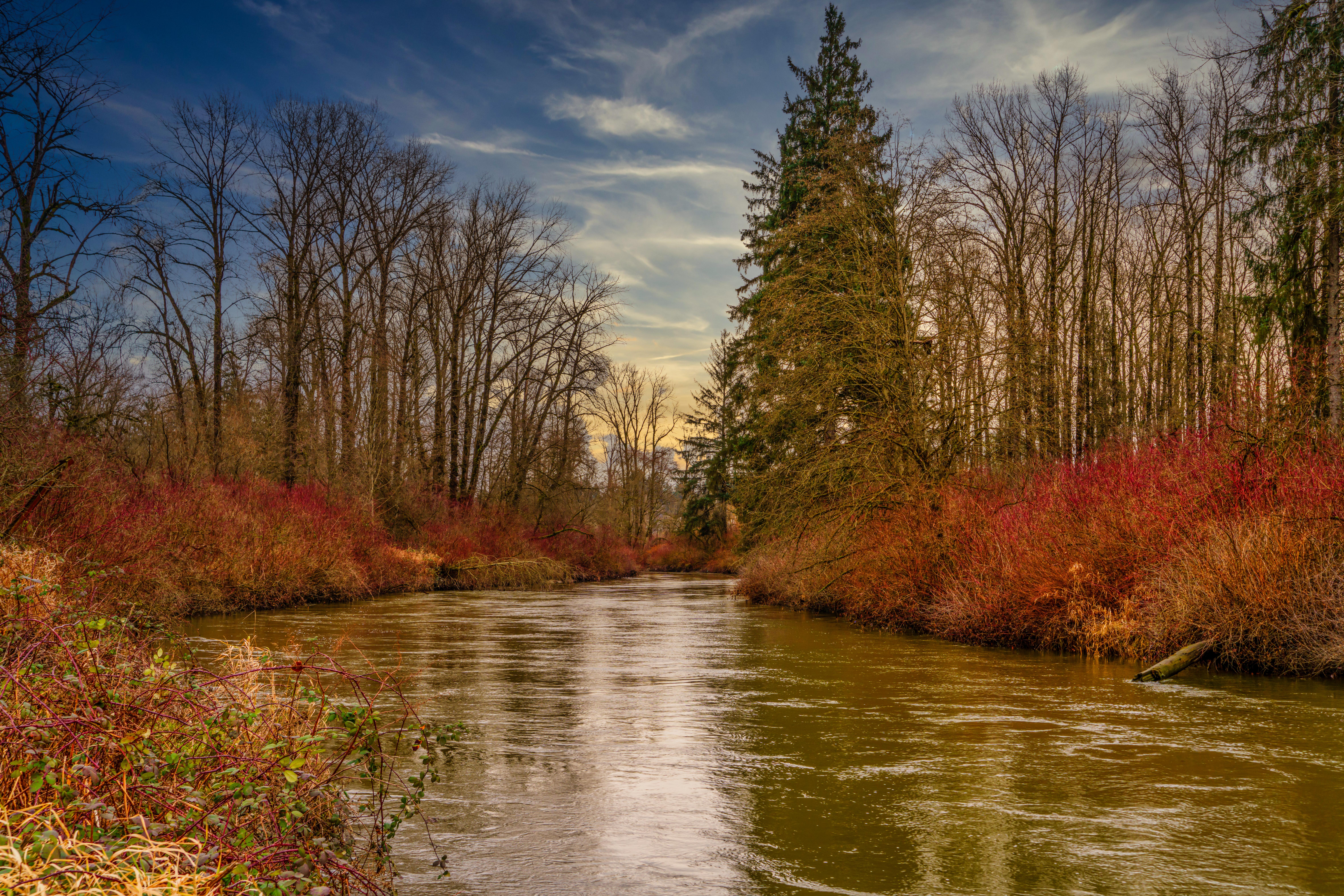 Coquitlam River1