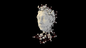 Houdini Mogafrag (Einstein's head)