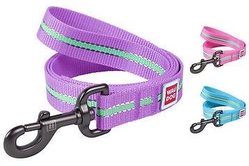 leash-nylon-glow-new-main.jpg
