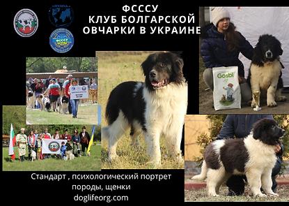 ФСССУ клуб болгарской овчарки .png