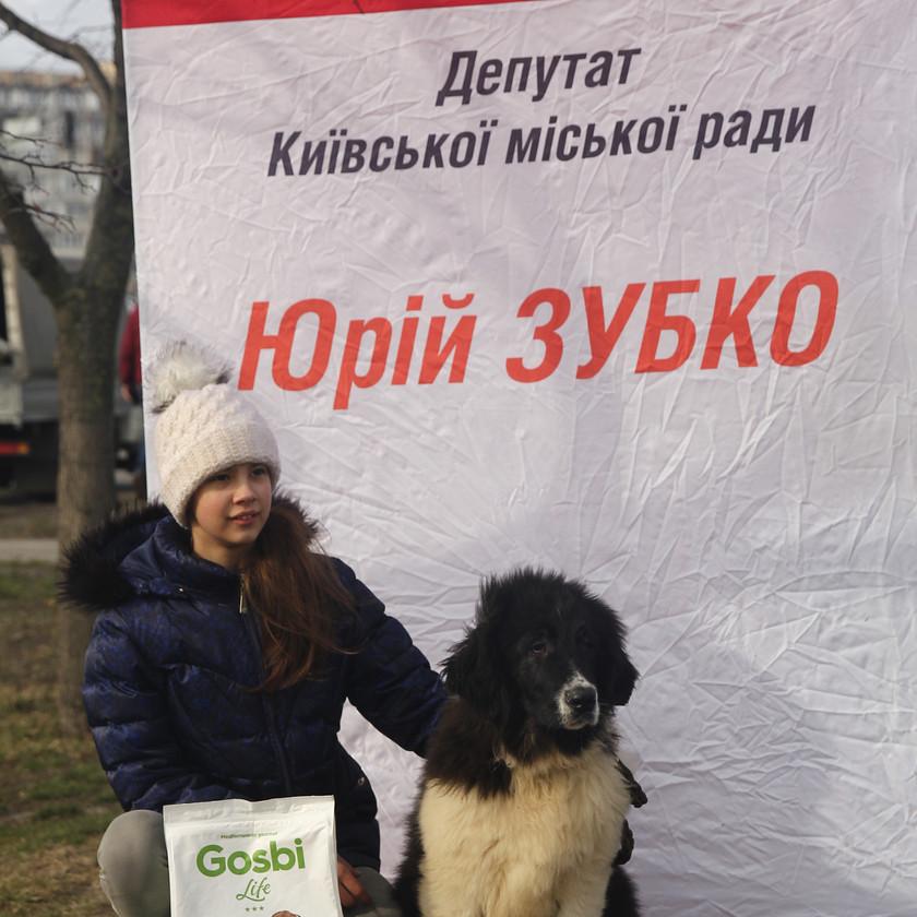 Маша и Болгарская овчарка Алан. Первые победы!
