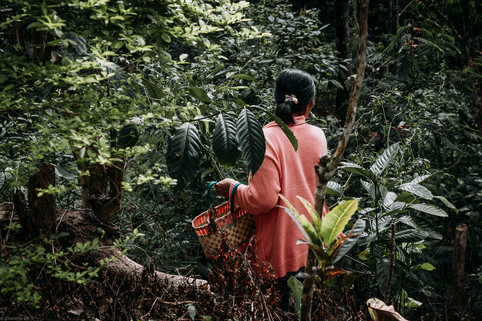 Charlotte Deckers Photography   Travel Photographer   Woman in the Forest