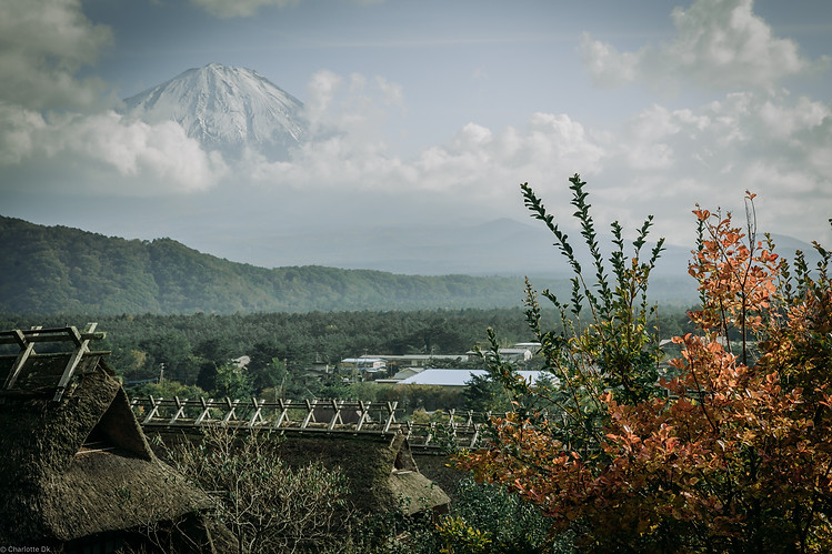 Charlotte Deckers Photography | Travel Photo Japan | Nature Landscape Mount Fuji