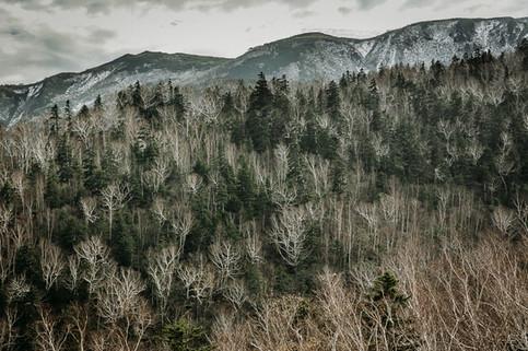 Charlotte Deckers Photography   Landscape Photographer   Nature Landscape