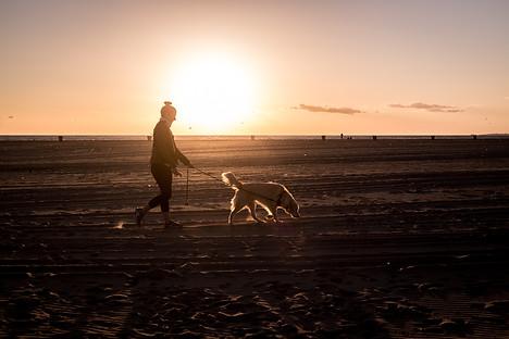 Charlotte Deckers Photography | Travel Photo | Sunset Venice Beach