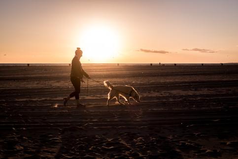 Charlotte Deckers Photography   Travel Photographer   Sunset Venice Beach
