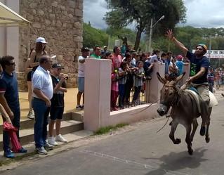 """""""Coplerito"""" se consagro campeón en el Rally de Burros"""