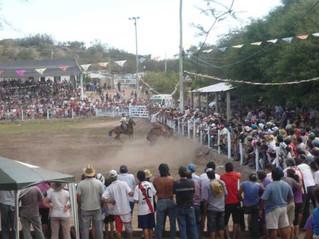 Grilla de Festivales de la costa riojana