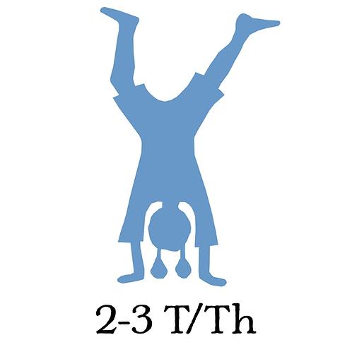 2-3 T/Th