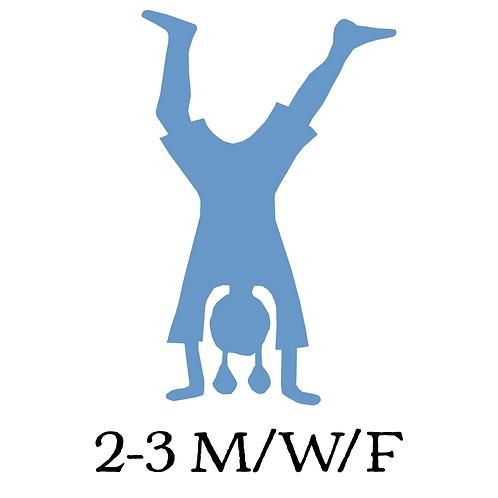 2-3 M/W/F