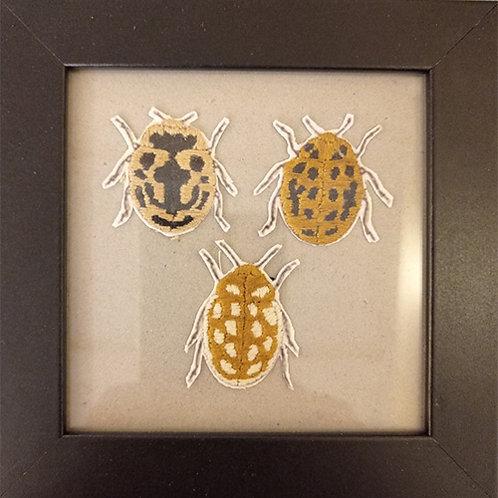Cadre 3 insectes beige, noir et blanc