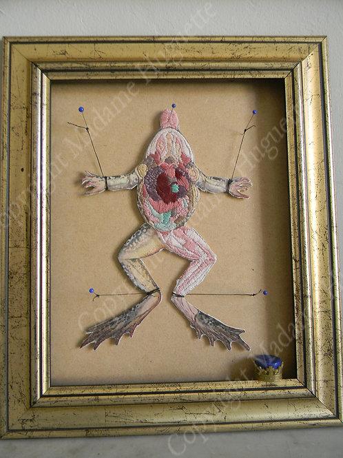Autopsie d'un conte de fée - Autopsie du Prince Charmant