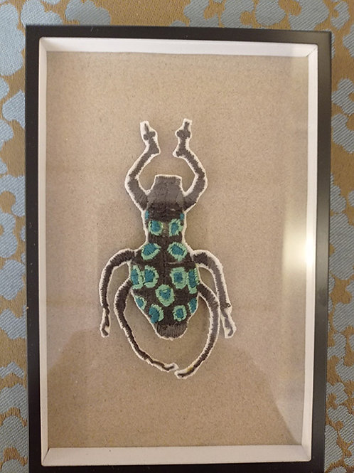 Cadre boîte 1 insecte bleu et noir