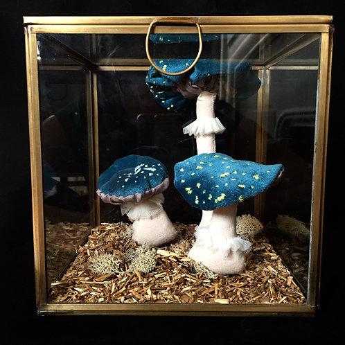 Série Alice et son foutu lapin : Les champignons bleus
