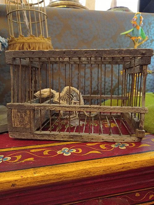 La cage à rat
