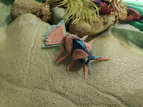 Crevette hermaphrodite
