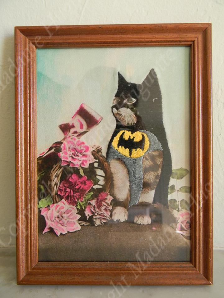 batcat_copyright_deco_objets_insolites_décorations_idée_cadeau_cabinet_de_curiosités
