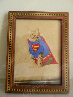 supercat_copyright_deco_objets_insolites_décorations_idée_cadeau_cabinet_de_curiosités