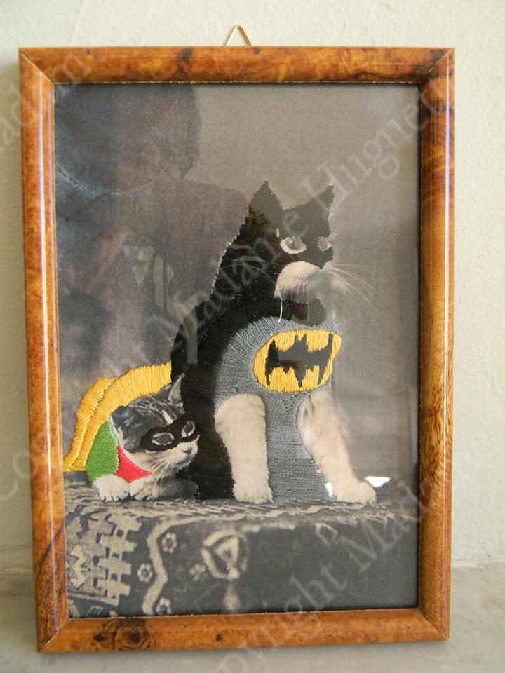 batcat_et_robin_copyright_deco_objets_insolites_décorations_idée_cadeau_cabinet_de_curiosités